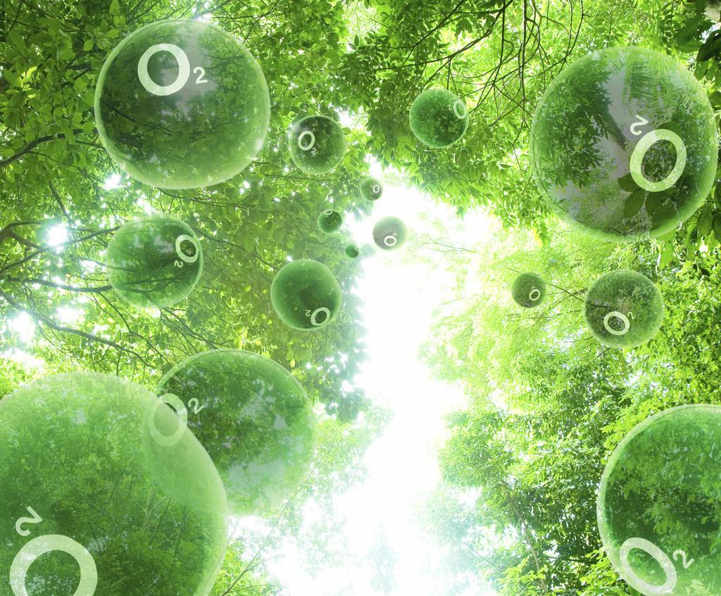 Phát minh cỗ máy sản xuất khí oxy cứu sống nhân loại